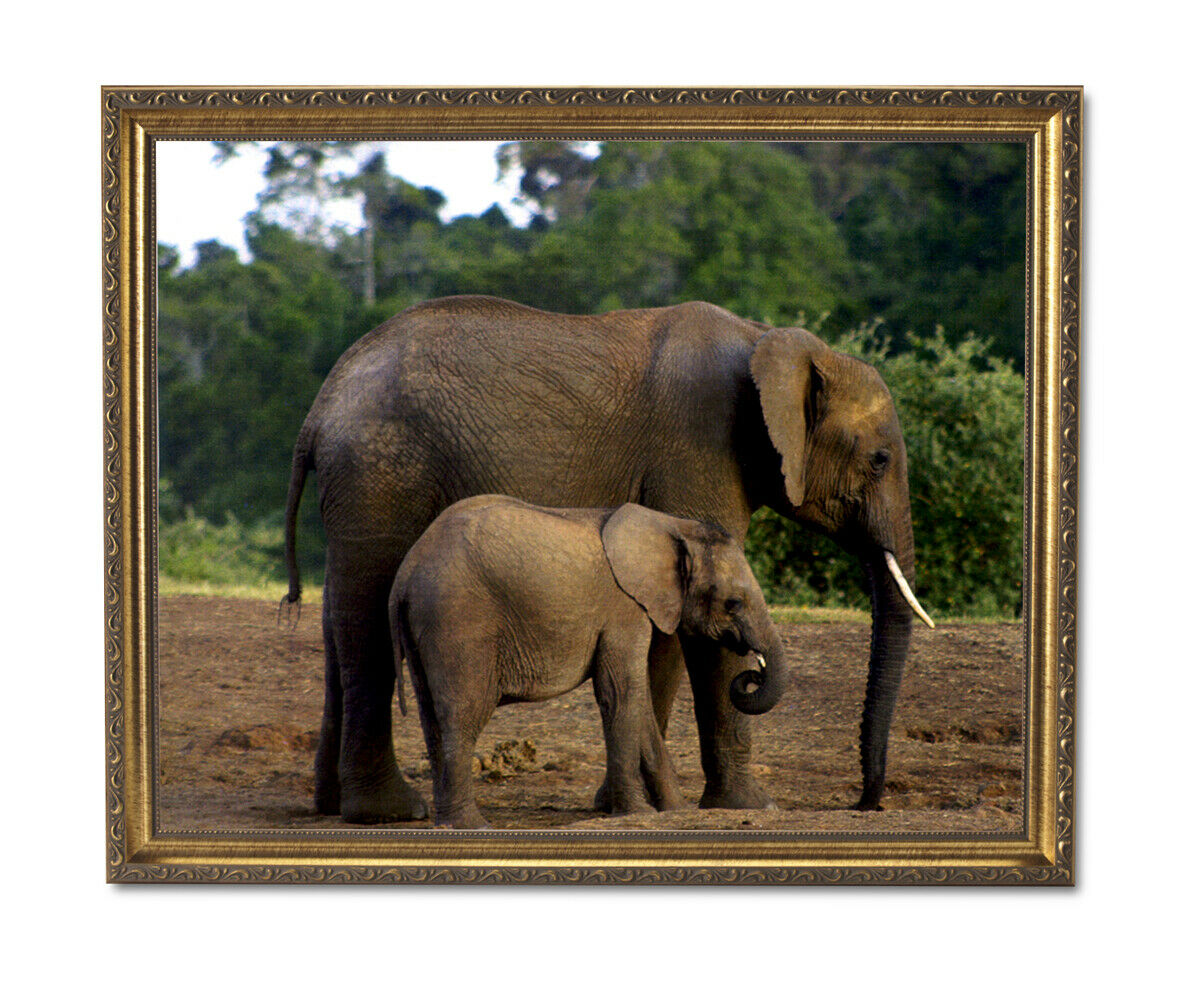 African Elephant And Baby Kids Room Wall Picture oro Framed Art Print