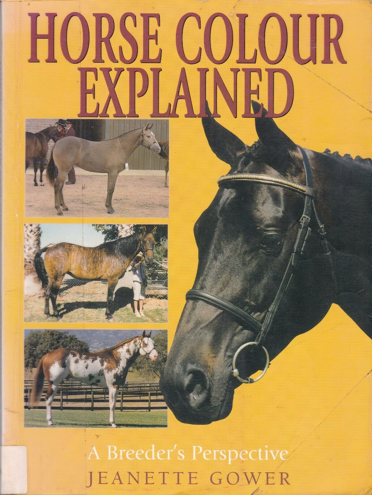Horse Colour Explained A Breeder's Perspective by Jeanette Gower  Paperback, 18