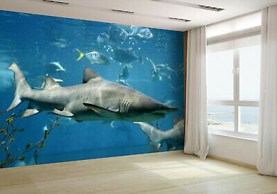 Cartoon Underwater World Wallpaper Mural Photo 45526428 budget paper