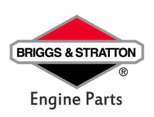 2000/Trx300/Tige 2/WD 1992 Amsamotion pour moteur Briggs /& Stratton 690189/Remani/é Rebuild Refresh Joint d/étanch/éit/é kit de 1992 2000/Trx300fw 4/WD