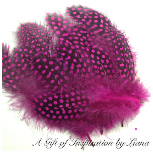 15 x 8-15cm HOT PINK Spotted Guinea fowl Feathers DIY Craft Millinery Jewellery