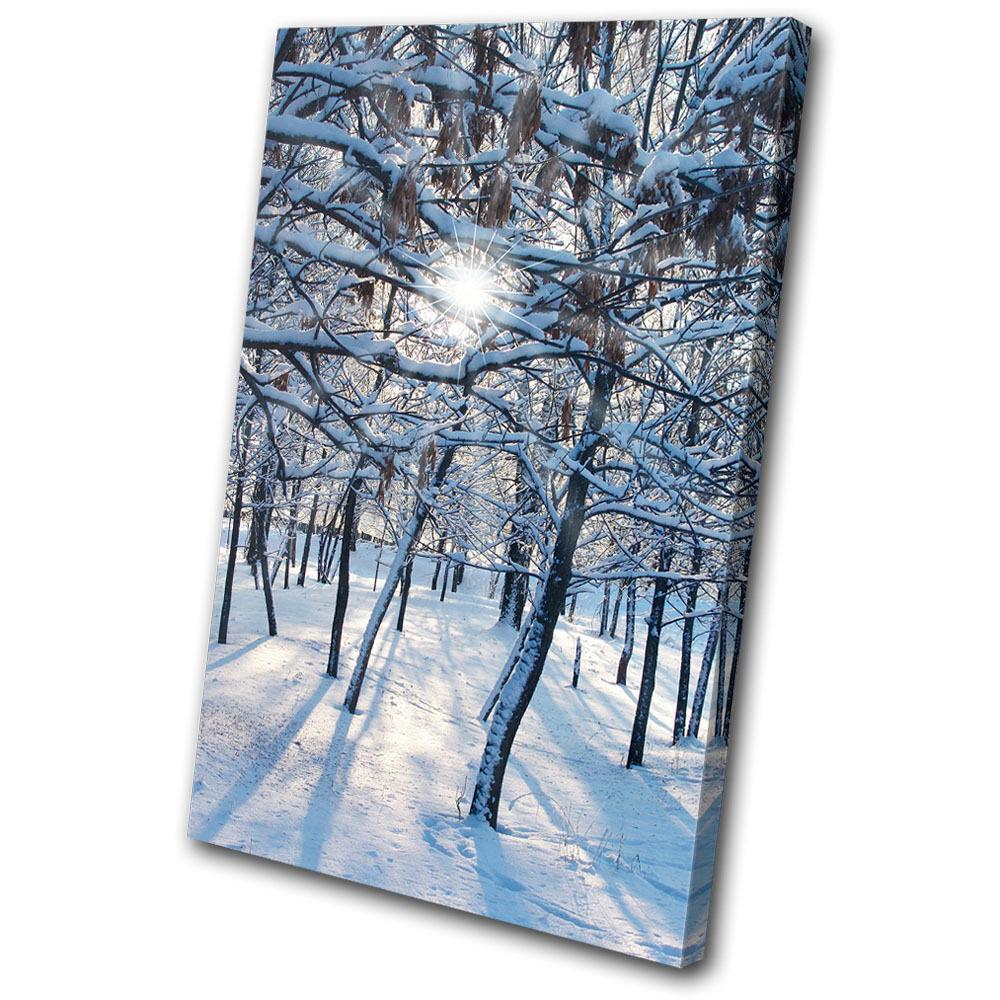 Landscapes Snow Forest SINGLE Leinwand Wand Kunst Bild drucken