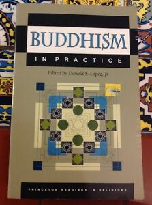 Princeton-Readings-in-Religions-Buddhism-in-Practice-1995-Paperback-Free-Ship