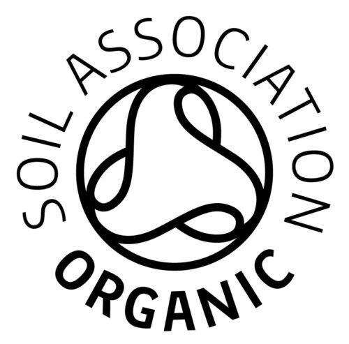 ORGANIC VEGETABLE  ONION STUTTGART  600 SEEDS