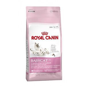 Royal Canin Bébé Chat Adulte Complet Sec Nourriture 2 Kg