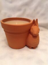 Hallmark Nature's Sketchbook Marjolein Bastin RABBIT POT GARDEN CANDLE