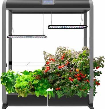 AeroGarden Farm 24 XL Easy Setup Healthy Eating Garden Kit