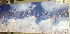 Skyward-Blowing-Grass-039-s-canvas-48-034-x-20-034-mounted-on-a-wooden-stretcher-O