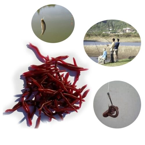 Outdoor Earth Worm Fishing Soft Lure Tackle Baits Bass Trout Bream 4cm 50Pc//Bag