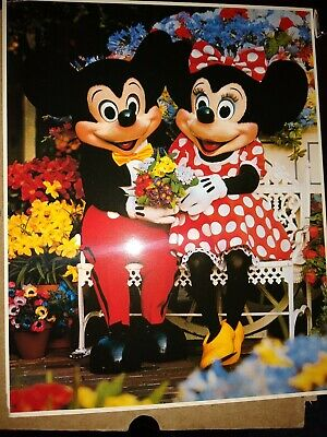 "WALT DISNEY 8/"" X 10/"" GLOSSY PHOTO REPRINT"