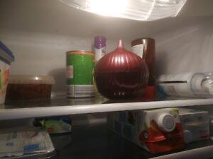 Kühlschrank Tresor : Kopierer tresor kühlschrank über treppen transportieren