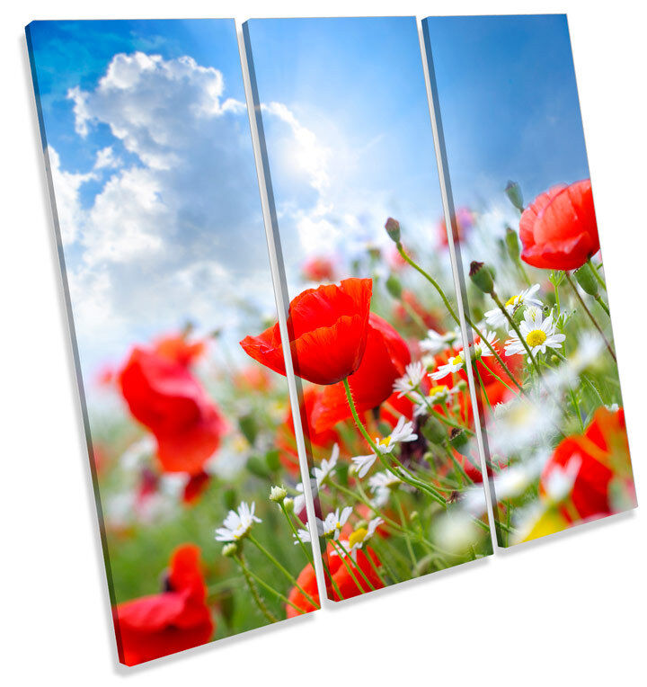 Poppy Field Summer Floral Flowers TREBLE CANVAS WALL ART Square Print Picture