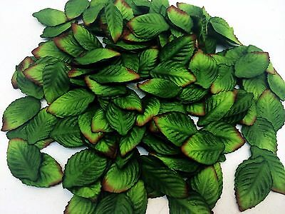 100 Leaves Rose Green Color mulberry paper for Craft & D.I.Y #01