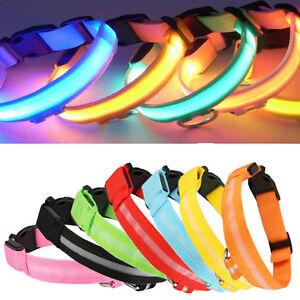USB Hunde Leuchthalsband Hundehalsband in 7 farben Verstellbare LED Halsband