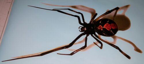 3D Spider Black Widow Realistic Tailgate Hood Window Decal Vehicle Truck Vinyl