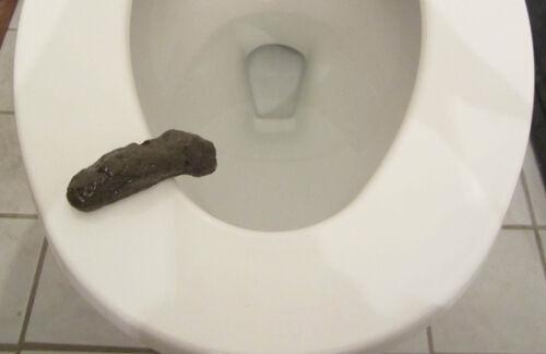 1 NEW PARTY POOPER BATHROOM TOILET GAG GIFT FAKE CRAP HUMAN TURD POOP JOKE