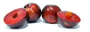 3-pieces-Plum-Trees-GRAFTED-Direct-Grower-rik-tinq