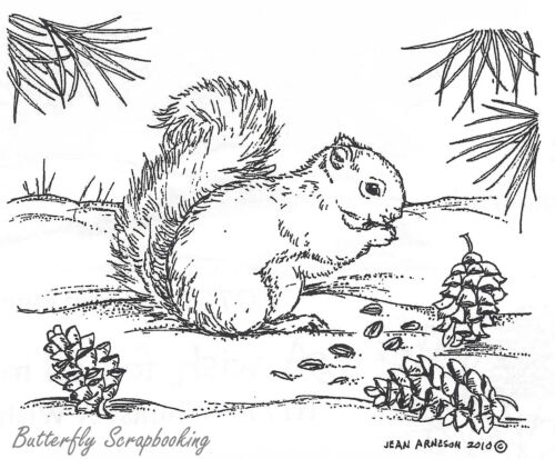 Squirrel With Pine Cones Wood Mounted Rubber Stamp New NORTHWOODS M7685 New