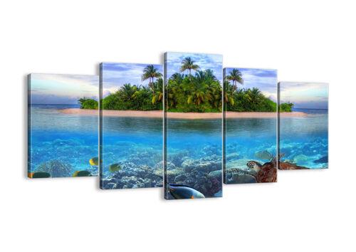 30 MUSTER Insel Tropen Fische DE 2686 DIGITAL ART LEINWAND BILDER