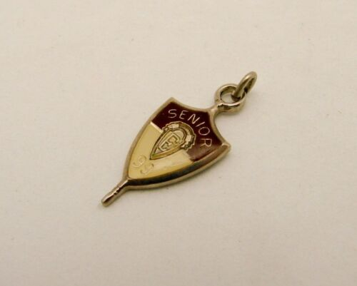 Jostens Senior E 1999 Enameled Charm Shield