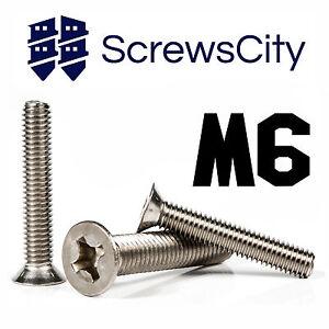 m6 machine screws