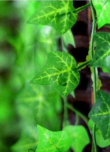 Künstliche Pflanzenhauptdekoration der grünen Kranzunkraut