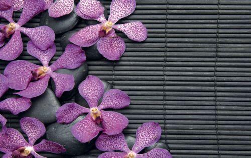 3 dimensions, papier mat ou papier photo Affiche poster fleurs réf 32