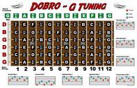 Dobro Fretboard Wall Chart Resonator Guitar Poster Tuning Notes Rolls Chords