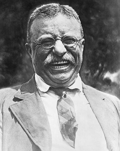 PRESIDENT TEDDY ROOSEVELT 1921 8x10 SILVER HALIDE PHOTO PRINT