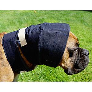 Emballage auriculaire sans rabat pour chien, petit, Service Premium, Expédition rapide 856328007012