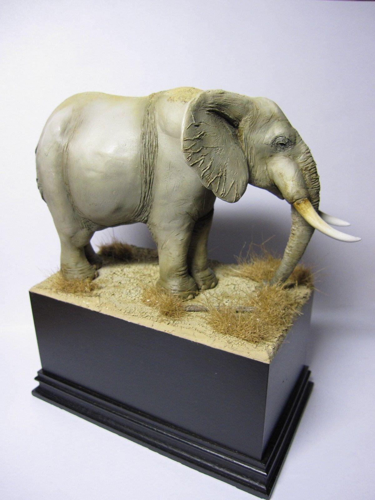 CIXMODELS CixM54003 AFRICAN ELEPHANT ELEFANTE  54mm 1 35    ANIMAL (NO  MANTIS ) 05a081