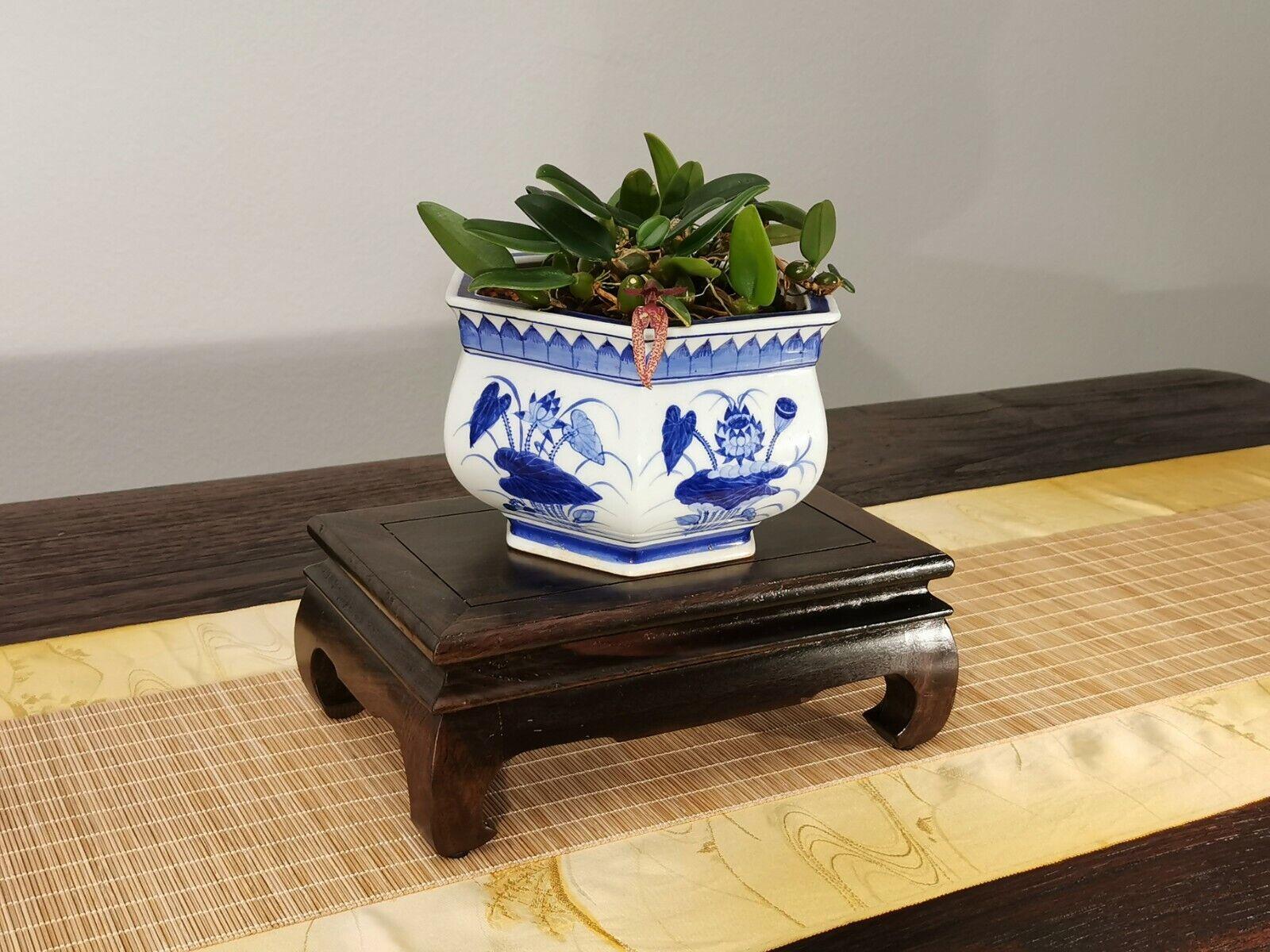 NEU  - Bonsai-Tisch, rechteckig, 24,5 x 16 x 9,5, Massivholz