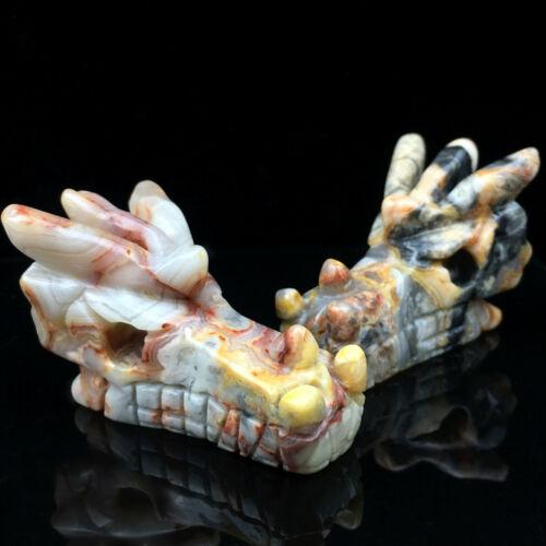 Natural Crazy agate Quartz hand carved Crystal dragon Skull Healing 1Pc