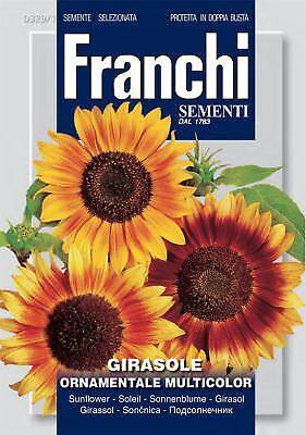 Franchi-fdbf _ 329-1 - Girasole-girasole Ornmental Multicolore-semi- Buoni Compagni Per Bambini E Adulti
