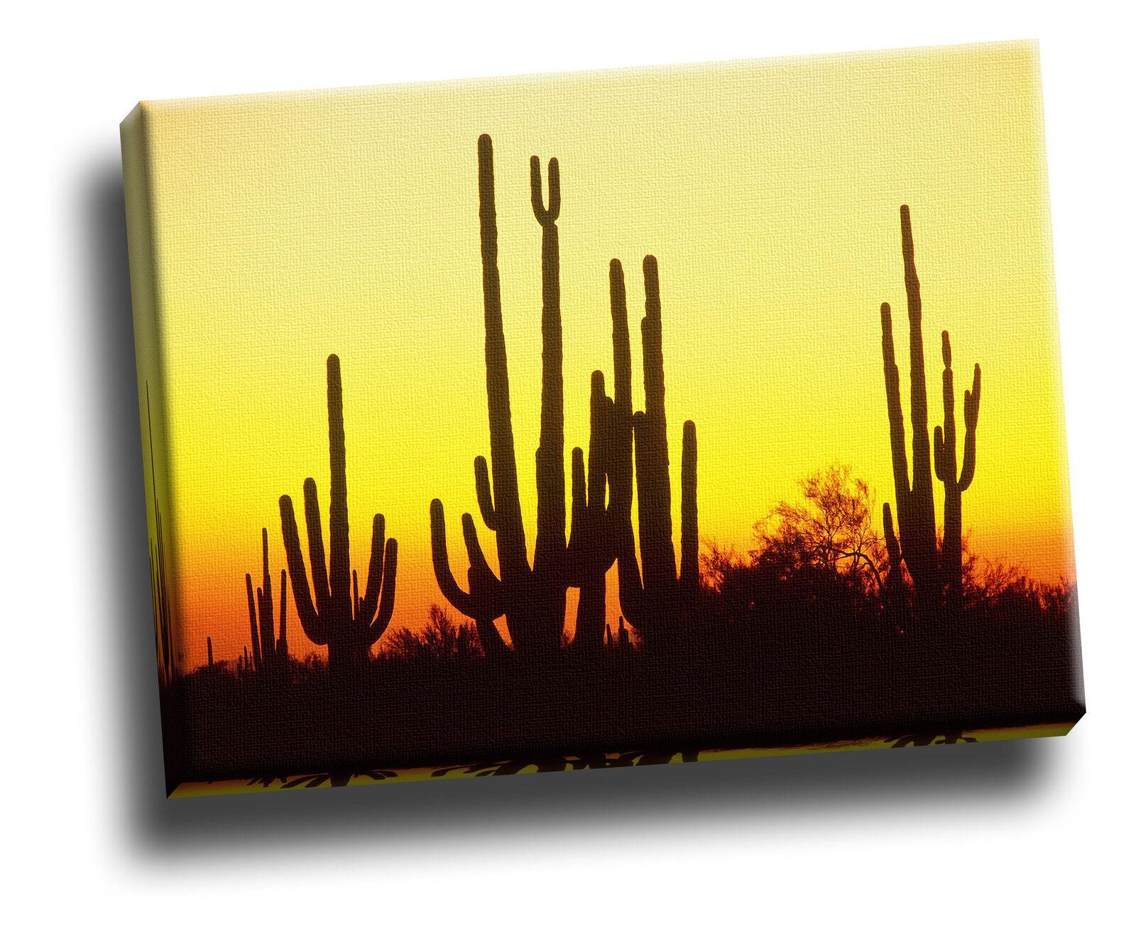 Saguaro Cactus at Sunset, Arizona Giclee Canvas Picture Wall Art