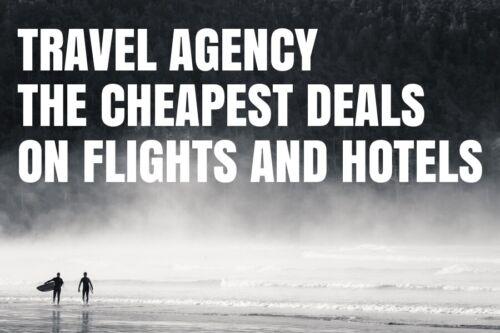 TRAVEL AGENCY WEBSITE BUSINESS FREE DOMAIN, HOSTING, SEO MAKE BIG MONEY