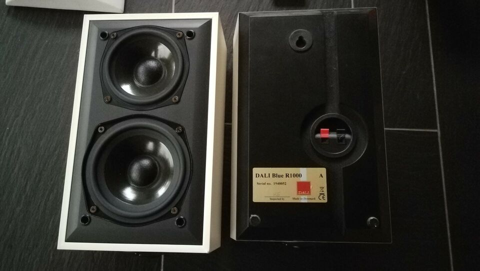 Højttaler, Dali, R1000