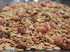 WEICHFUTTER 10 kg Vogelfutter Rosinen Erdnüsse schalenlos BESSER als Fettfutter