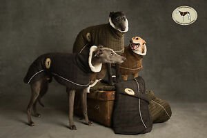 Tweed-Coat-for-Greyhounds-Whippets-Lurchers-Salukis