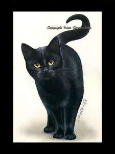 Black-Cat-Print-Amber-Eyes-by-I-Garmashova