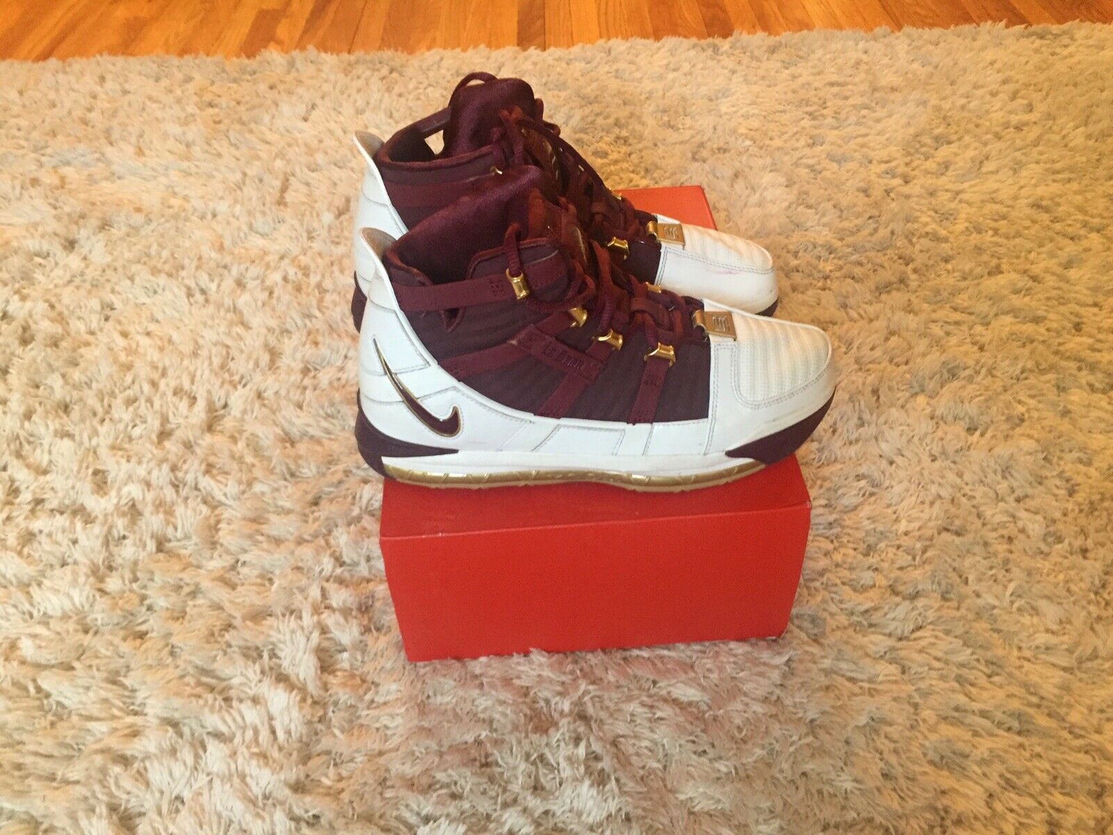 Nike Zoom Lebron 3 III CHRIST THE KING CTK sz 7