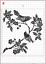 Hermosa Pájaros en rama de la plantilla de Mylar A4 hoja fuerte Reutilizable Artesanía De Arte Deco