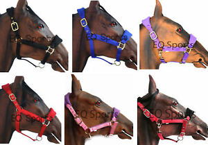BROWN COLOR FULL LEATHER HEAD COLLAR FULLY RAISED /& PADDED COB AND PONY SIZE