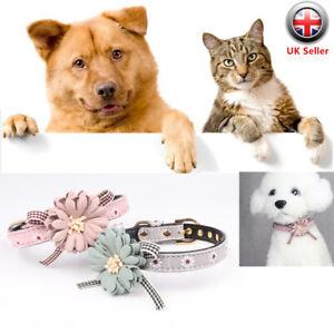 Humoristique Réglable Collier Fleur Nœud Papillon Colliers Pour Chien Pet Puppy Chaton Accessoires-afficher Le Titre D'origine Vente D'éTé SpéCiale