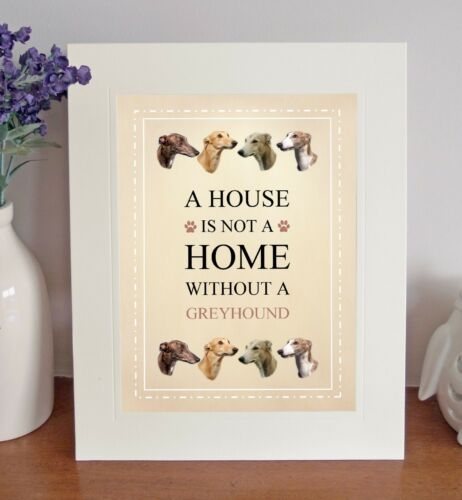 Greyhound 8 x 10 Free Standing A HOUSE IS NOT A HOME Picture 10x8 Dog Print Gift