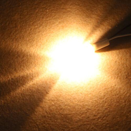 30X Mini G4 Halogen 12V Birne Leuchtmittel 20W Stift Sockel Halopin Lampe Birnen