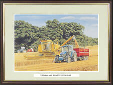"""NGN76 Old Farm Tractor picture /""""Tasty Tyres/"""" by Trevor Mitchell"""