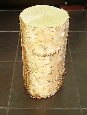 "Onverdroten Silver Birch Bark Wood Log Decorative Log Centerpiece Section.16"" Tall. 6-7"" Dia"