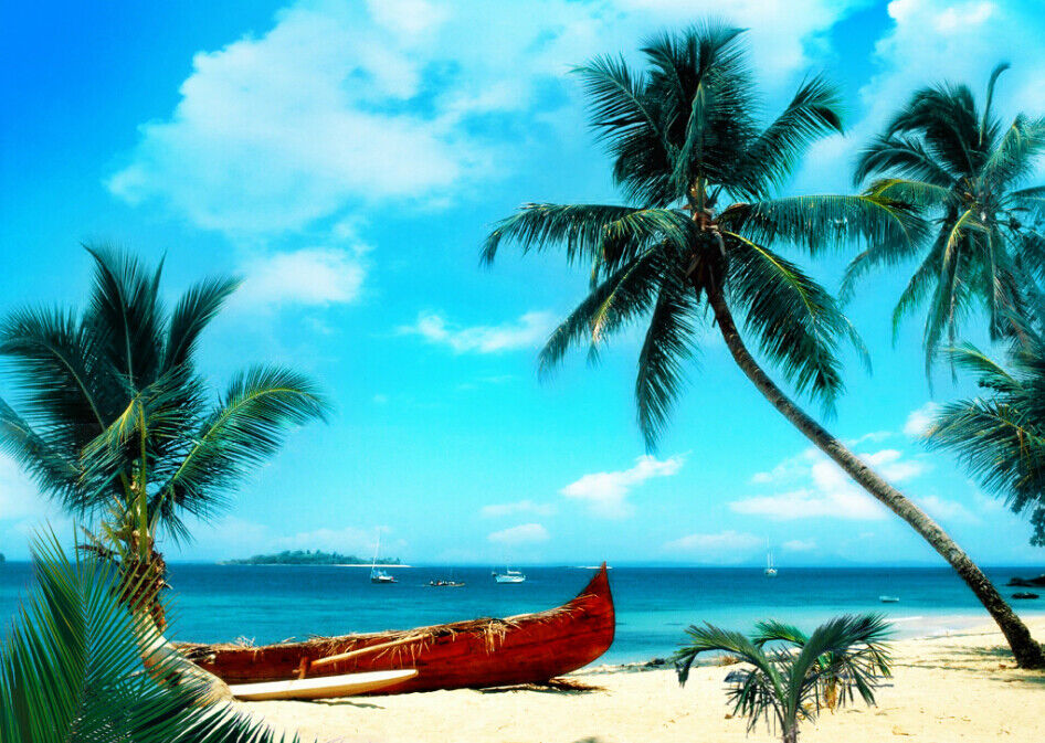 3D Kokosnussbaum Strand 73 Tapete Wandgemälde Tapete Tapeten Tapeten Tapeten Bild Familie DE  | Großhandel  | Räumungsverkauf  | Qualitätsprodukte  b36449