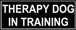 Dean-amp-Tyler-THERAPY-DOG-IN-TRAINING-Patches-for-Working-Dog-Harness-or-Collar